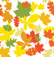 seamless autumn leaves white vector image vector image