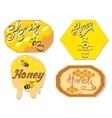 Honey label logo vector image