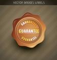 money back guarantee vector image vector image