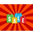 Sale discount with shopping bags vector image