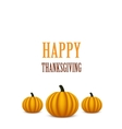 Thanksgiving Day card with pumpkins vector image vector image
