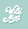 wild mint hand drawn lettering isolated vector image vector image