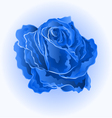 Blue rose simple symbol of love vector image vector image