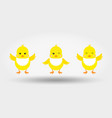chicks in bib icon flat vector image vector image