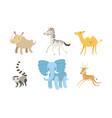 cute african animals set rhino zebra camel vector image vector image