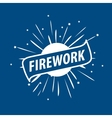 logo for fireworks vector image vector image