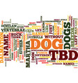 test your canine acumen text background word vector image vector image
