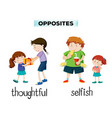 vocabulary english opposite word vector image vector image