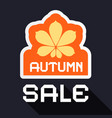 autumn sale banner with chestnut leaf symbol flat vector image