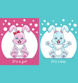 baby shower greeting card with rabbits boy and vector image vector image
