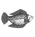 fish zentangle undersea world zen tangle and vector image