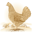 Graphical chicken vector image vector image