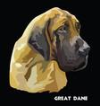 great dane colorful portrait vector image vector image