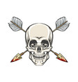human skull and arrows tattoo vector image vector image
