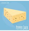 Pepper Jack cheese icon vector image vector image
