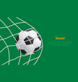 realistic detailed 3d soccer ball hitting on net vector image vector image
