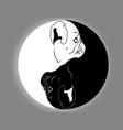 yin yang pug vector image vector image