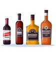 best whiskey set bottles vector image