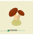 Cartoon colored mushrooms Isometric vector image vector image