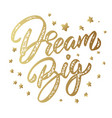 dream big lettering phrase isolated on white vector image vector image