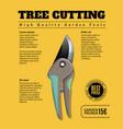 garden tools ad poster vector image