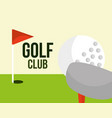 golf club ball and red flag field sport vector image vector image
