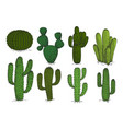 hand drawn engraving cactus set isolated on vector image vector image