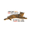 i do not trust people who do not like cats vector image vector image