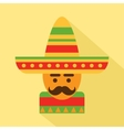 Mexican man in sombrero vector image