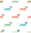 Seamless pattern with cute dachshound dogs vector image vector image