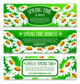 spring daisy flowers banner set design vector image vector image