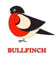Bullfinch Colorful Geometric Icon vector image vector image