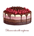 delicious cake with raspberries vector image vector image