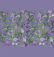 flowers and herbs isolated on a purple background vector image