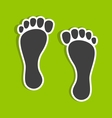 Foot imprints vector image vector image