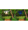 Forest scene at daytime and nighttime vector image vector image
