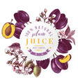 plum juice paper emblem over hand drawn plum vector image vector image