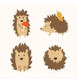 Cartoon Hedgehog Set vector image