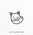 cat slipping template vector image