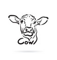 hand drawn cow on white background farm animal vector image vector image