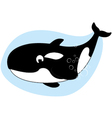 Happy killer whale vector image