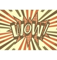 vintage wow signature for any design eps vector image