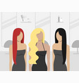women in hair salon vector image