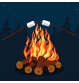 Bonfire with marshmallow vector image vector image