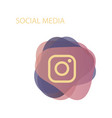 camera icon social media instagram icon vector image