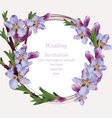 cherry blossom round card frame spring summer vector image vector image
