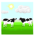 Cows on the lawn vector image vector image