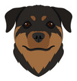 isolated rottweiler avatar vector image vector image