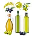 olive bottles oil glass package healthy natural vector image