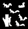 set of silhouettes of squirrels vector image